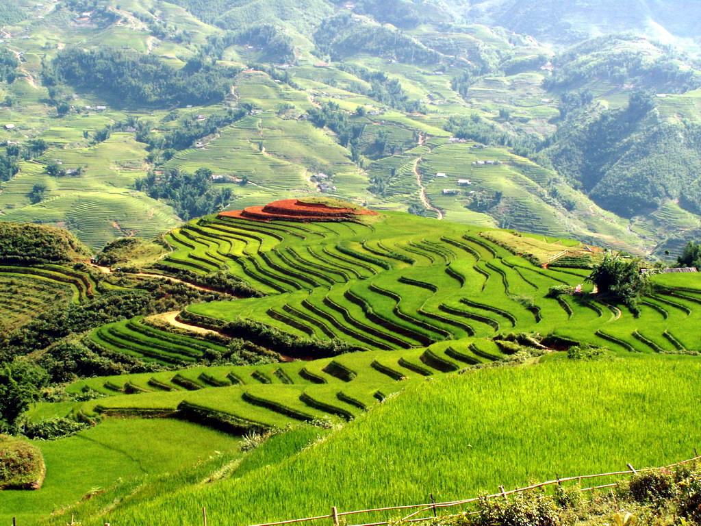 lao-cai-province
