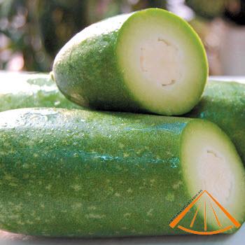 ezvietnamesecuisine.com/green-squash-with-pork-and-scrimp-stuffing